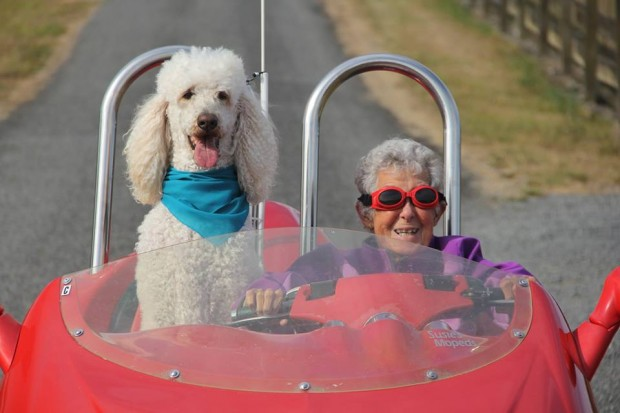 90-year-old woman declined chemo, started to travel with her dog instead