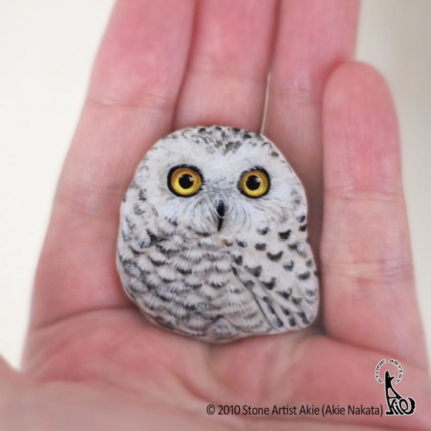 What a rock star! Self-taught Japanese artist creates realistic animal designs on pebbles - including an adorable hedgehog and a raccoon